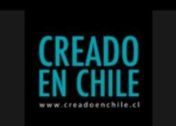 CORTINA DE BAÑO SELECCIÓN PÁJAROS DE CHILE - Creado en Chile