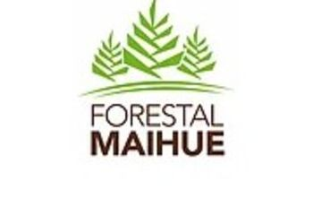 Techos madera nativa - FORESTAL MAIHUE